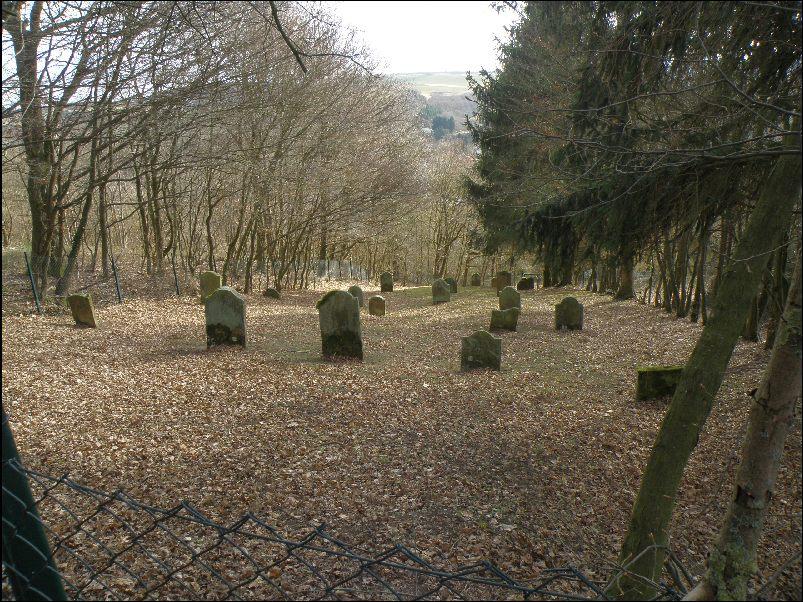 Bildergebnis für münsterappel jüdischer Friedhof
